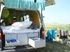 Rügen im Vanarama-Bulli